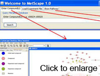 MetScape Screen Shot